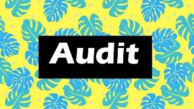 audit général