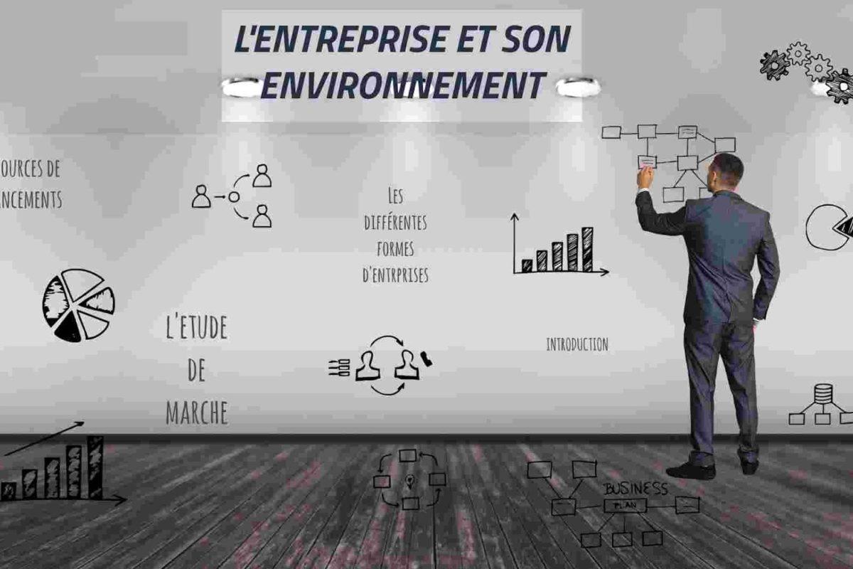 l'entreprise et son environnement