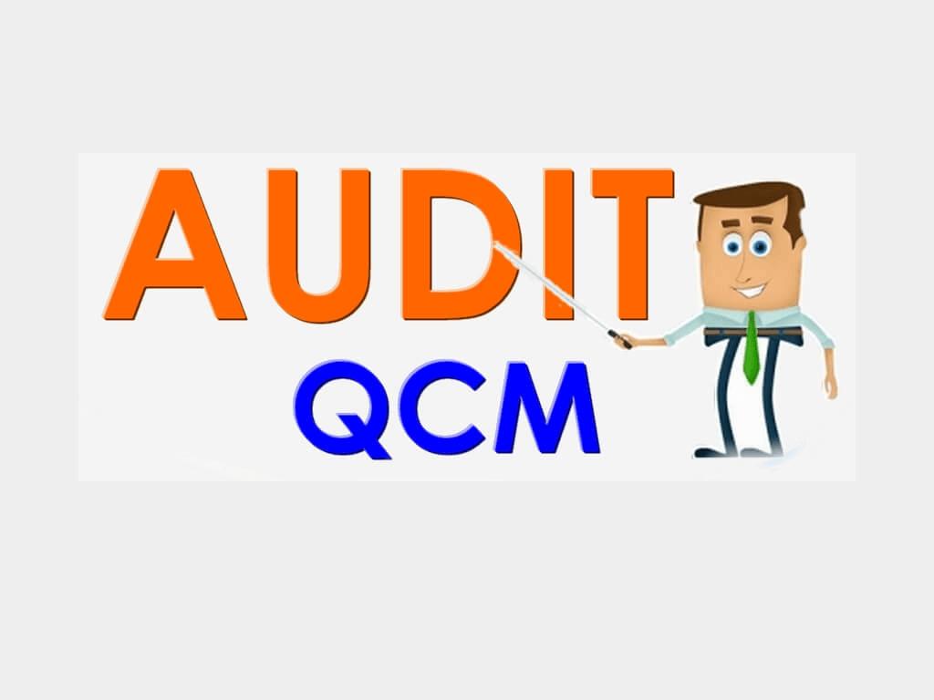 QCM en audit général