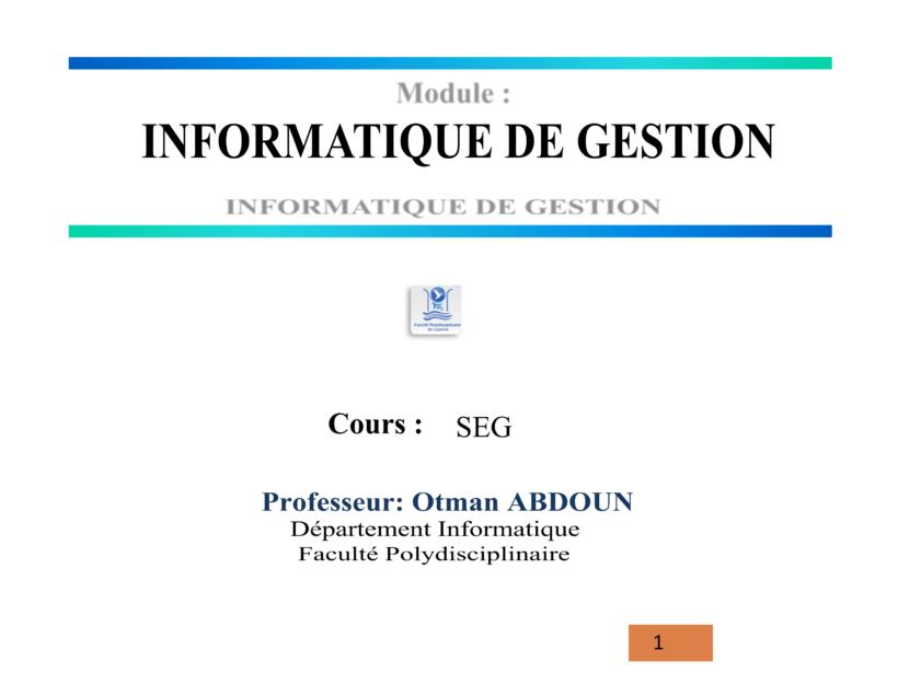 cours complet d'informatique de gestion pdf