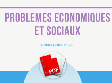 cours de problèmes économiques et sociaux S3 PDF