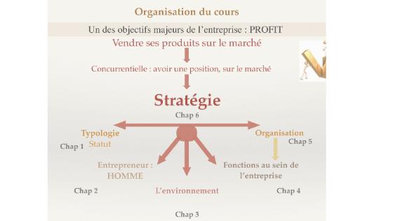 organisation du Cours de Management S1 PDF [diapo]
