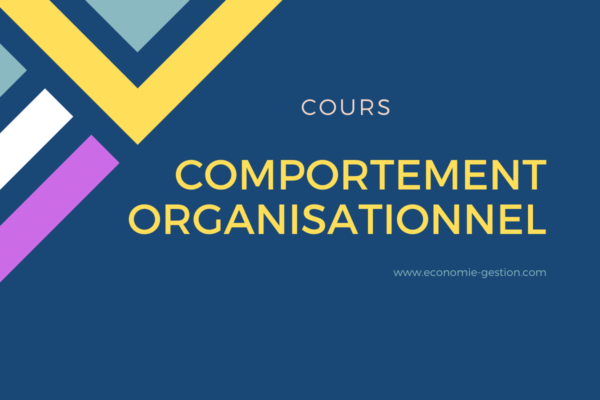 comportement organisationnel cours pdf